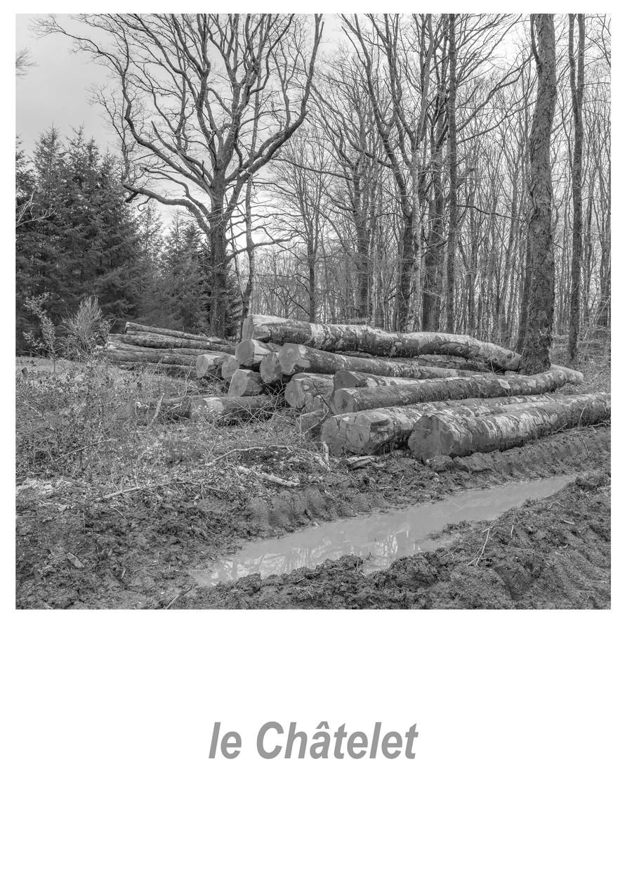 le_Châtelet_1.2w.jpg