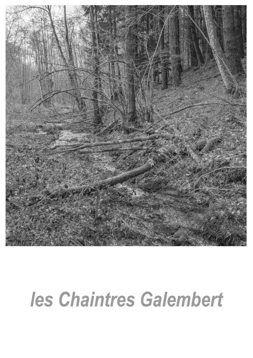 les Chaintres Galembert 1.3w.jpg