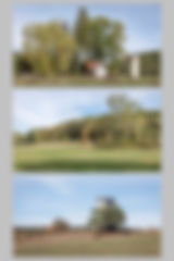 Planche 9.1w.jpg