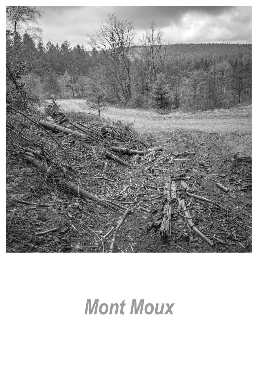 Mont Moux 1.2w.jpg