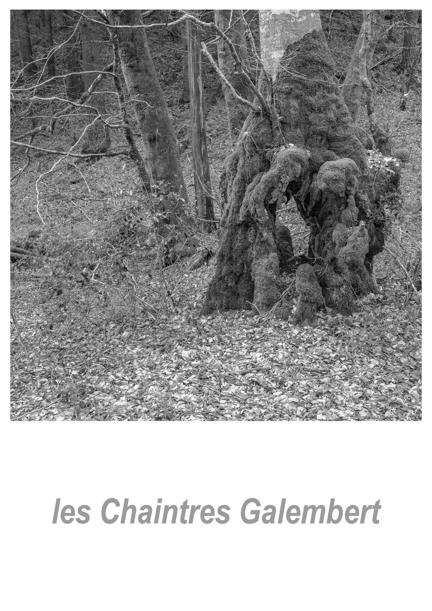 les Chaintres Galembert 1.2w.jpg