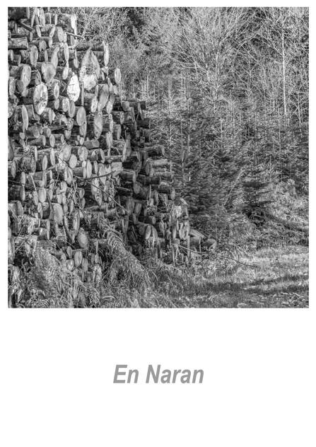 En Naran 1.2w.jpg