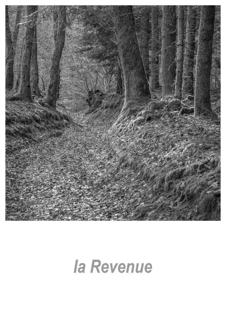 la Revenue 1.9w.jpg