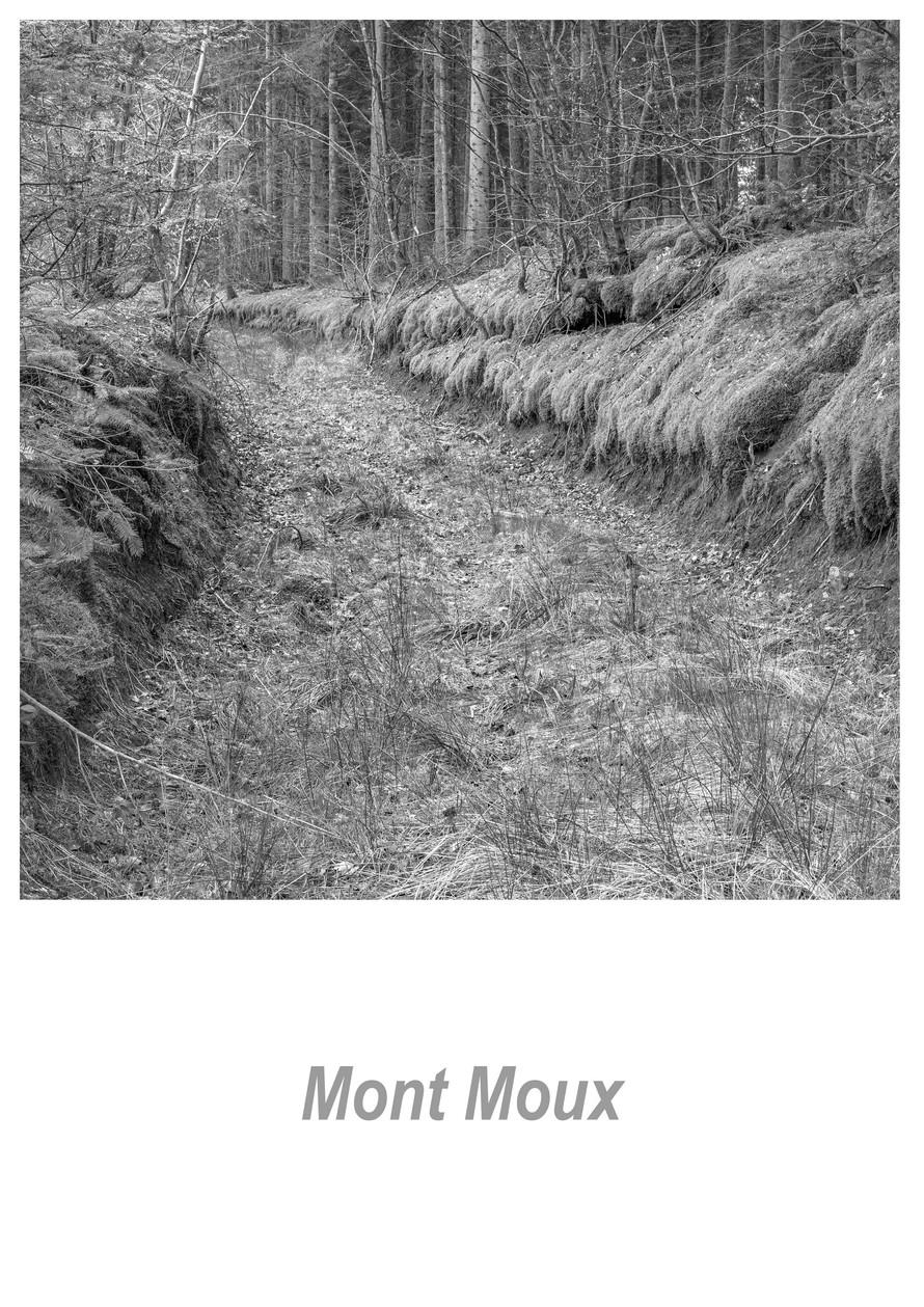 Mont Moux 1.3w.jpg