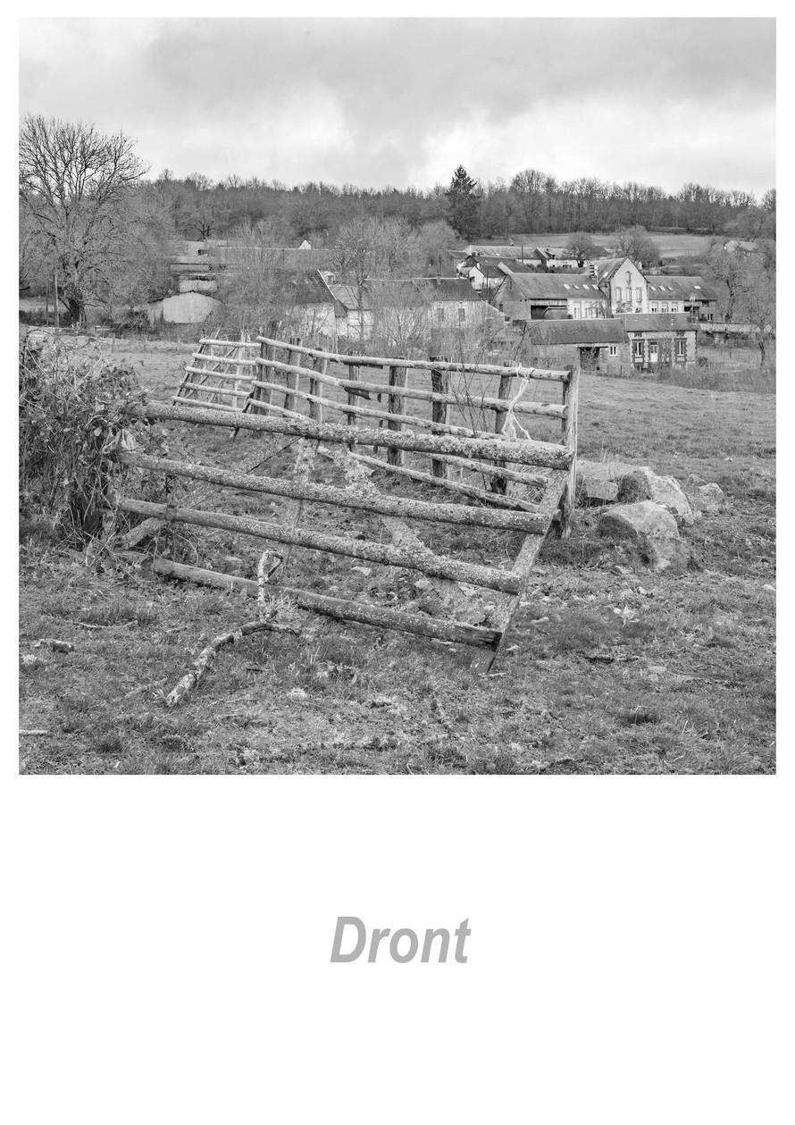 Dront 1.2w.jpg