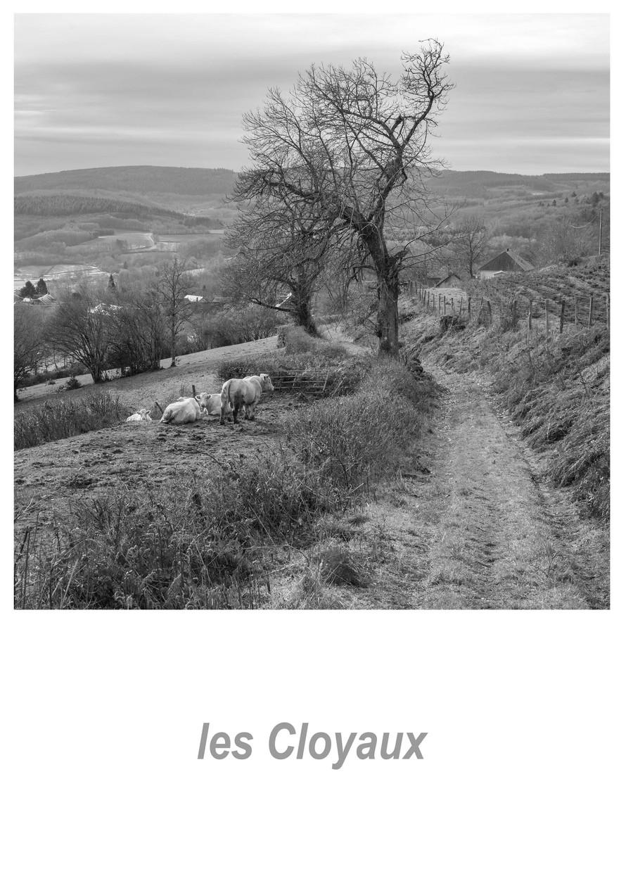 les Cloyaux 1.2w.jpg