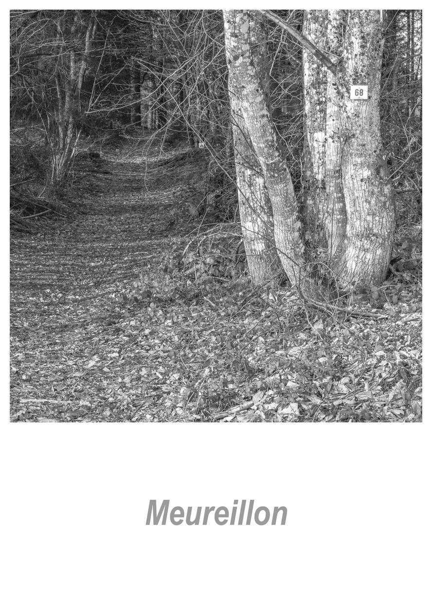 Meureillon 1.1w.jpg