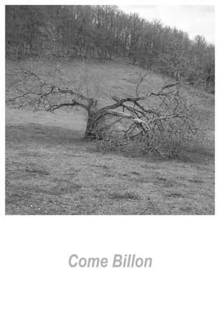 Come Billon 1.4w.jpg
