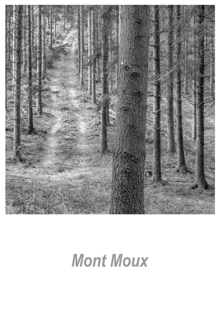 Mont Moux 1.6w.jpg