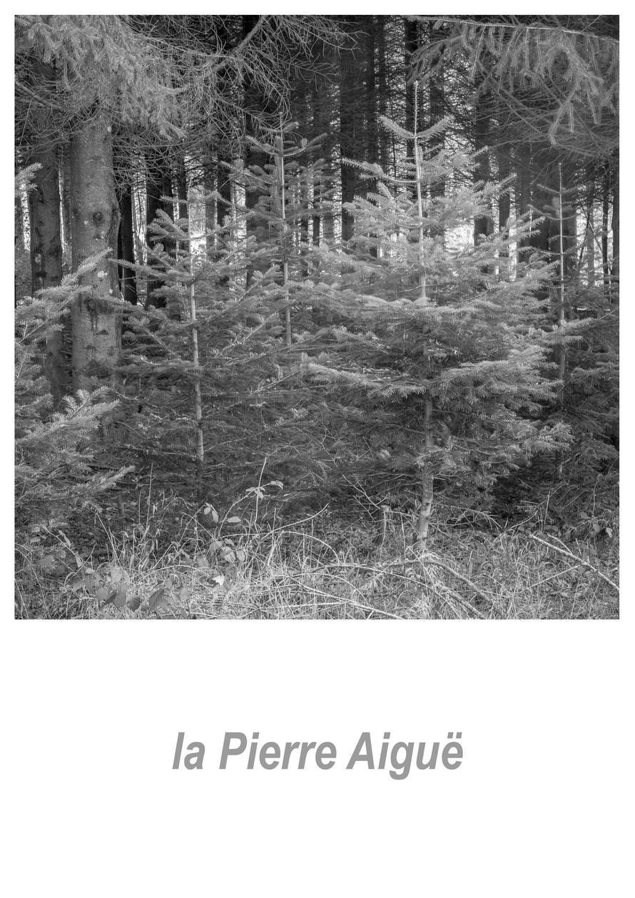la_Pierre_Aiguë_1.1w.jpg