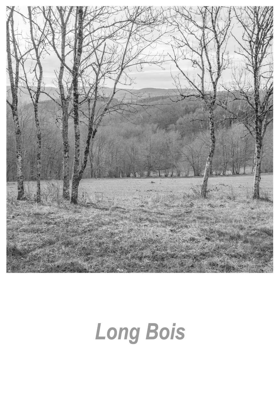 Long Bois 1.2w.jpg