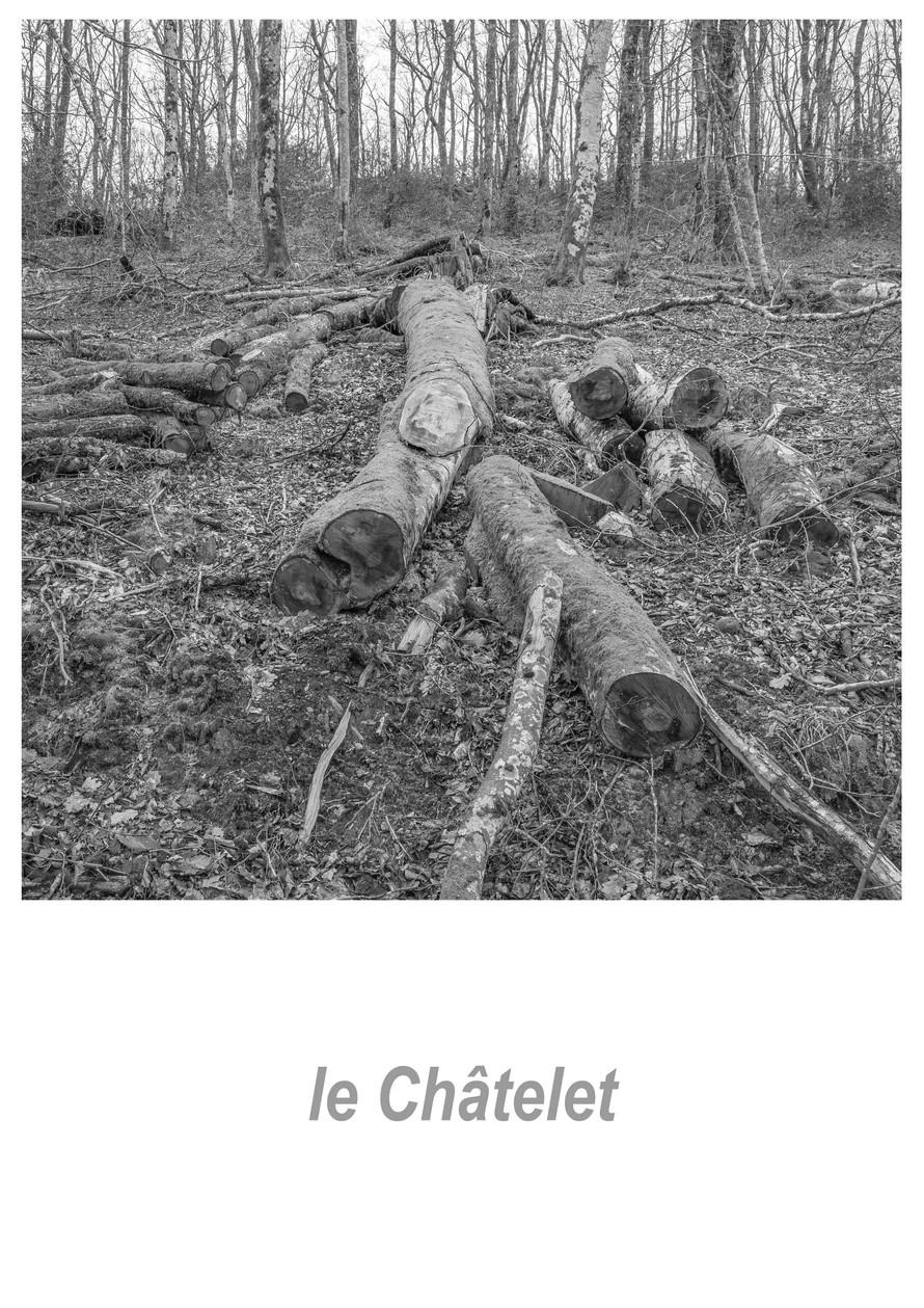 le_Châtelet_1.3w.jpg