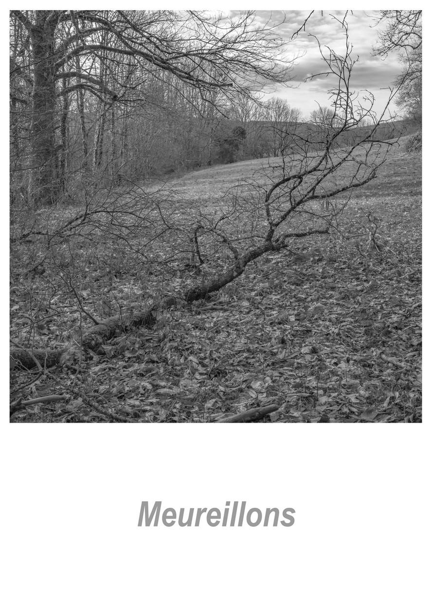 Meureillons 1.4w.jpg