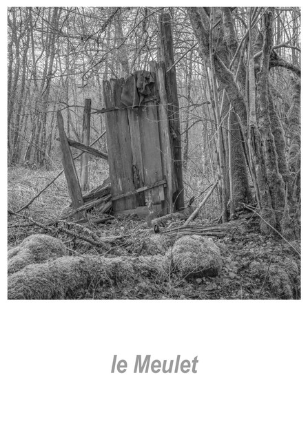 le Meulet 1.1w.jpg