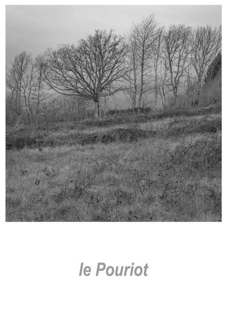 le Pouriot 1.1w.jpg