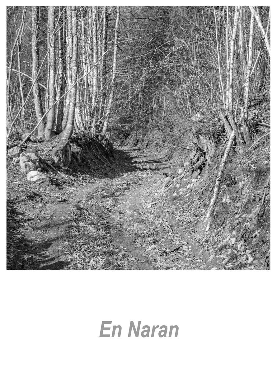 En Naran 1.5w.jpg