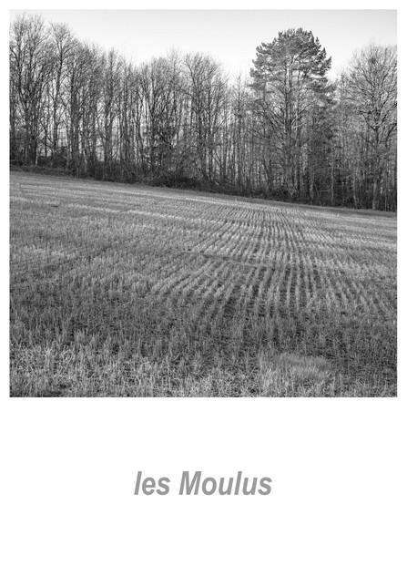 les Moulus 1.2w.jpg