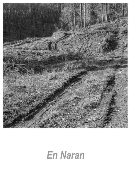 En Naran 1.4w.jpg