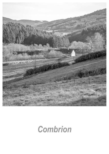 Combrion 1.4w.jpg