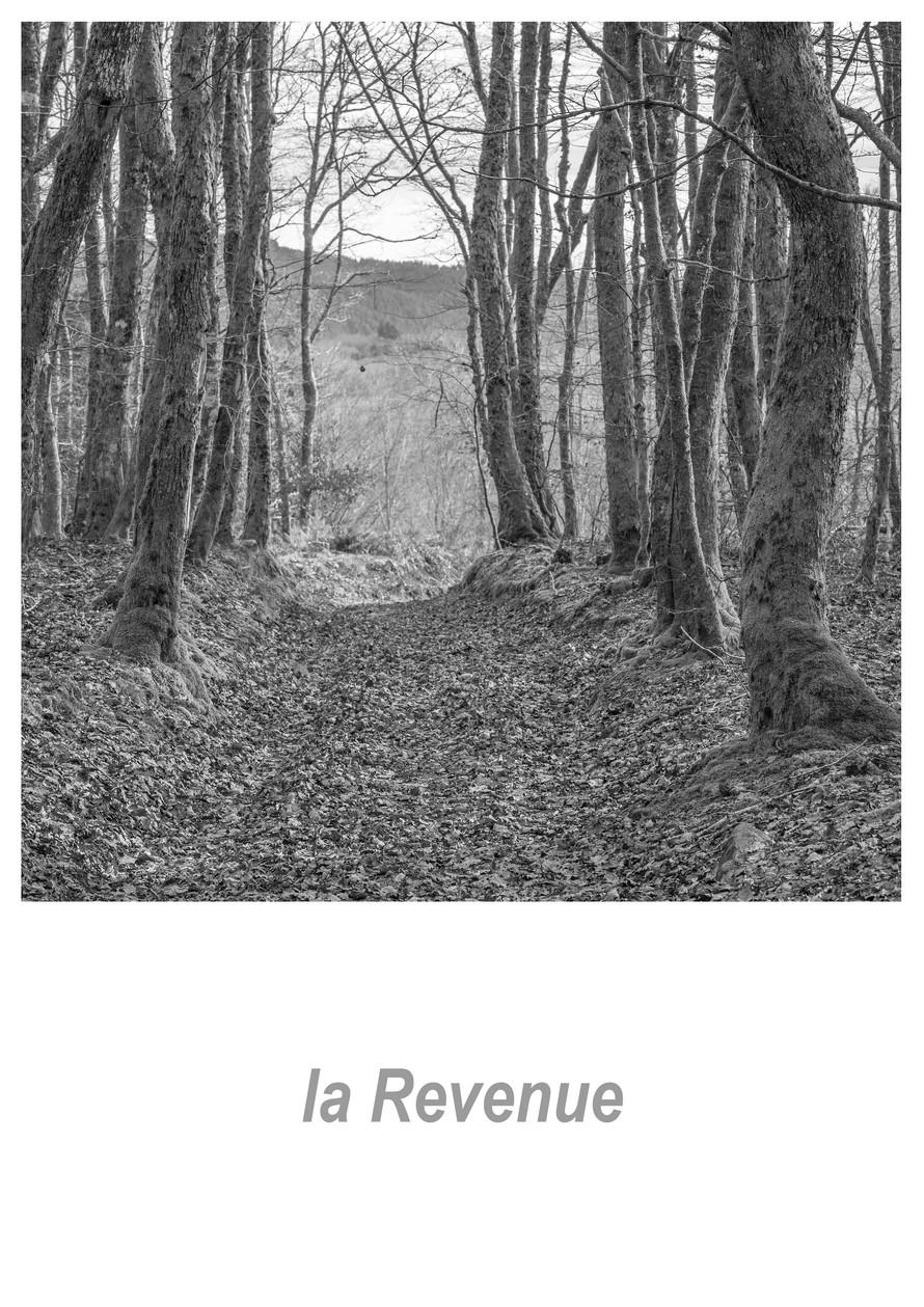 la Revenue 1.7w.jpg