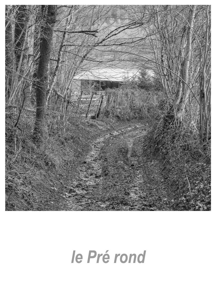 le_Pré_rond_1.9w.jpg