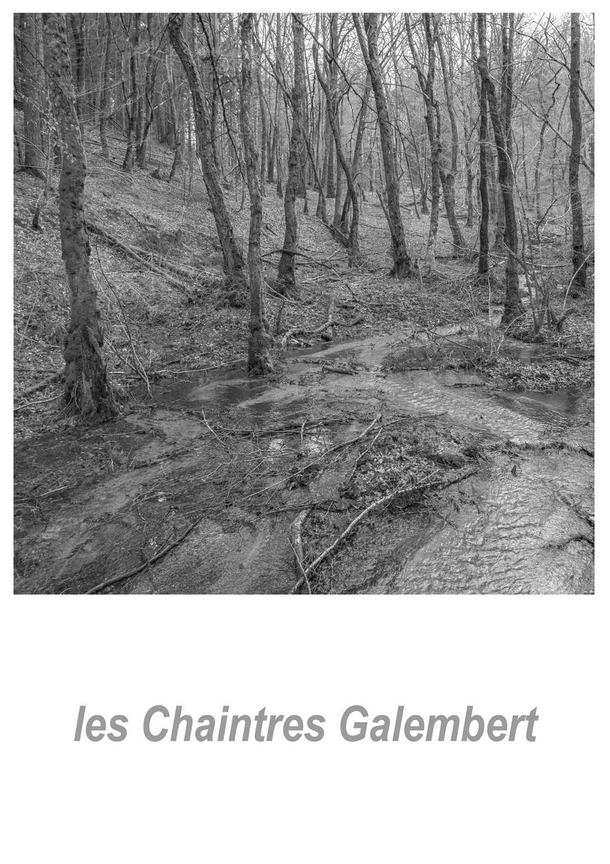 les Chaintres Galembert 1.1w.jpg