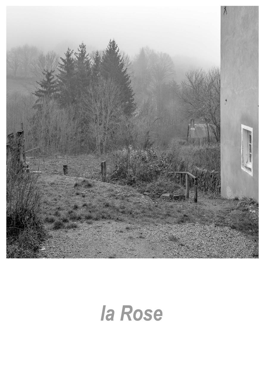 la Rose 1.4w.jpg