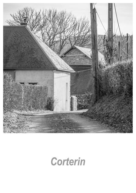 Corterin 1.2w.jpg