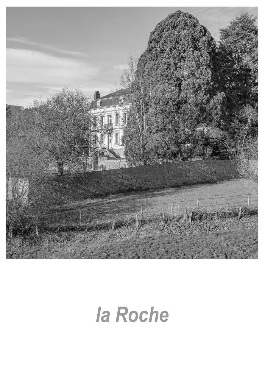 la Roche 1.2w.jpg