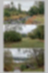 Planche 6.2w.jpg