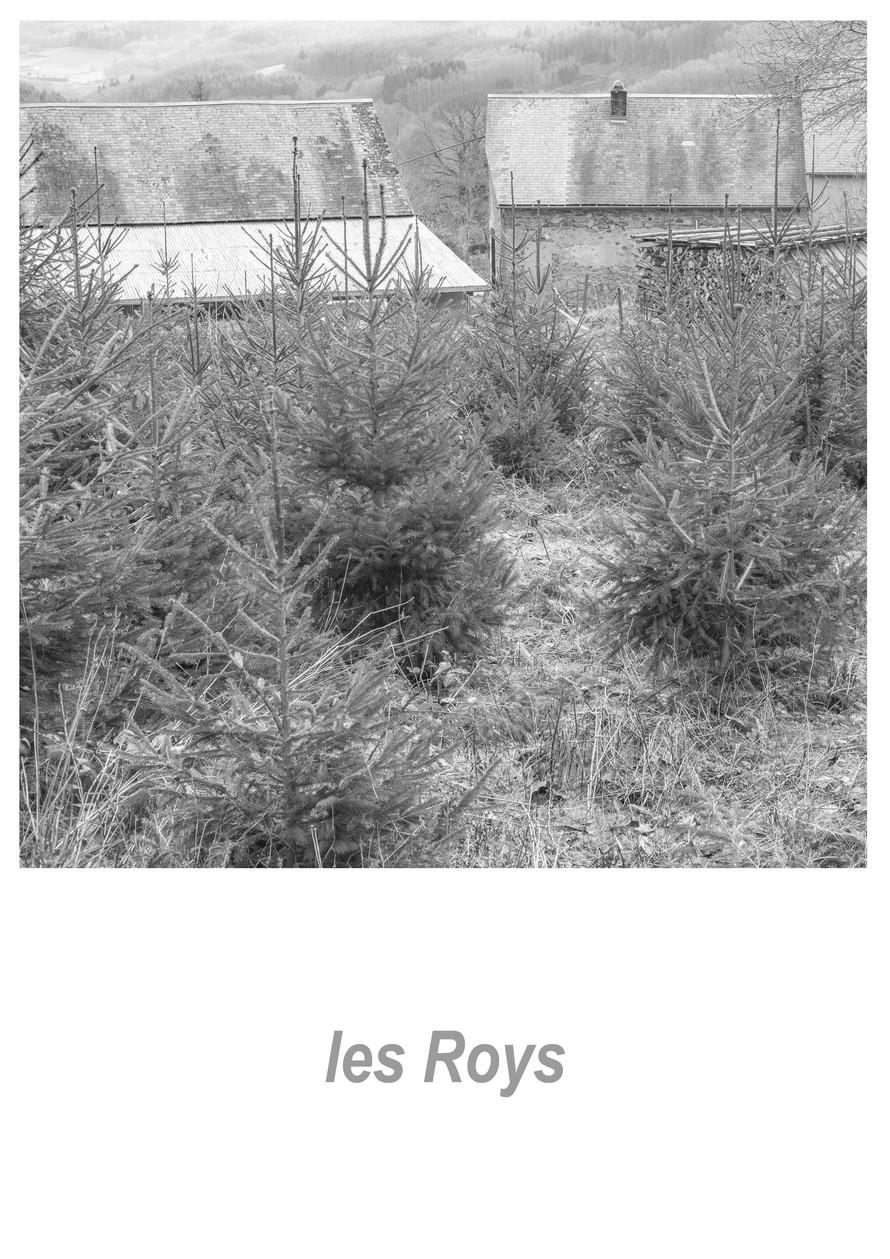 les Roys 1.7w.jpg