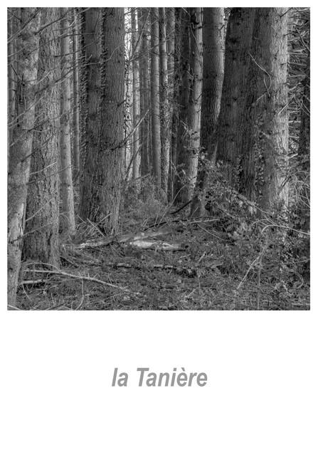 la Tanière 1.4w.jpg