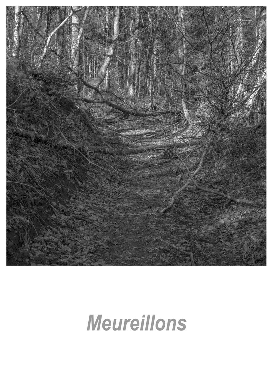 Meureillons 1.3w.jpg