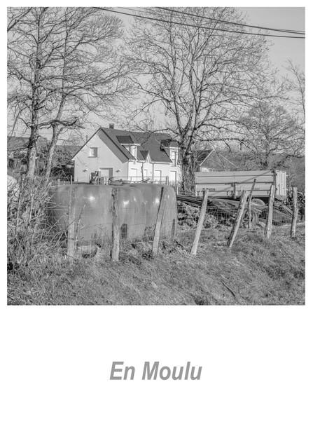 En Moulu 1.1w.jpg