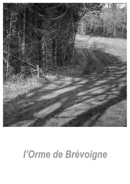 l'Orme de Brévoigne 1.4w.jpg