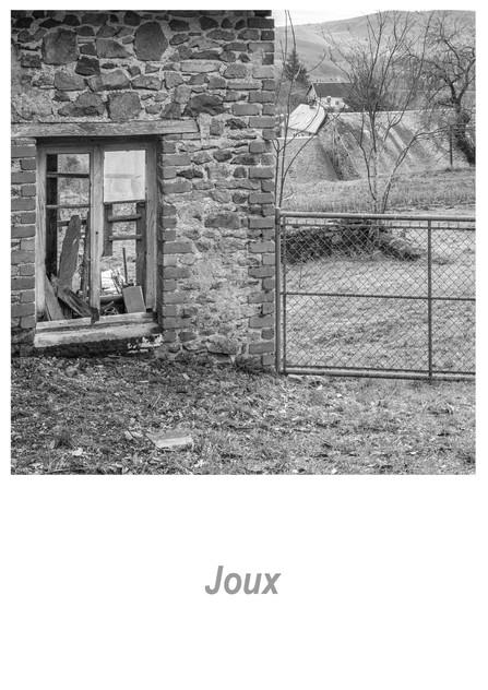 Joux 1.5w.jpg