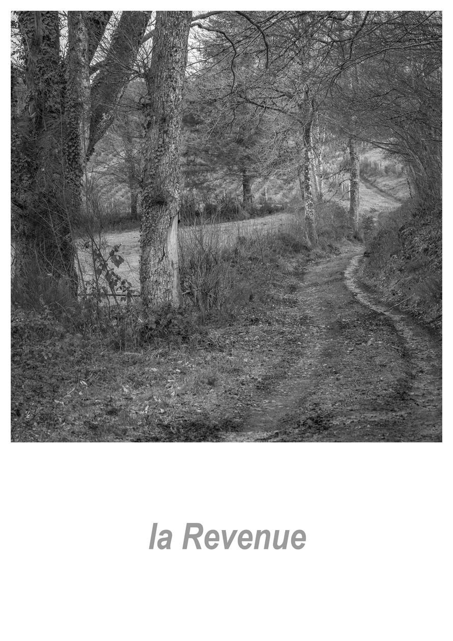 la Revenue 1.10w.jpg