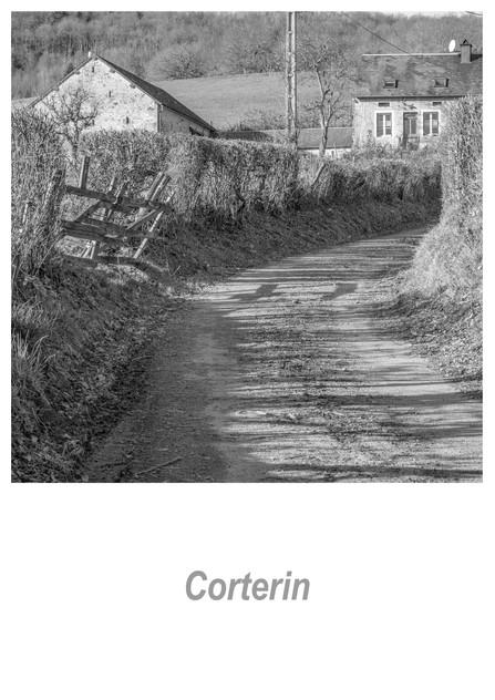 Corterin 1.5w.jpg