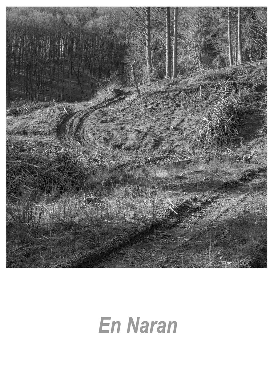 En Naran 1.3w.jpg