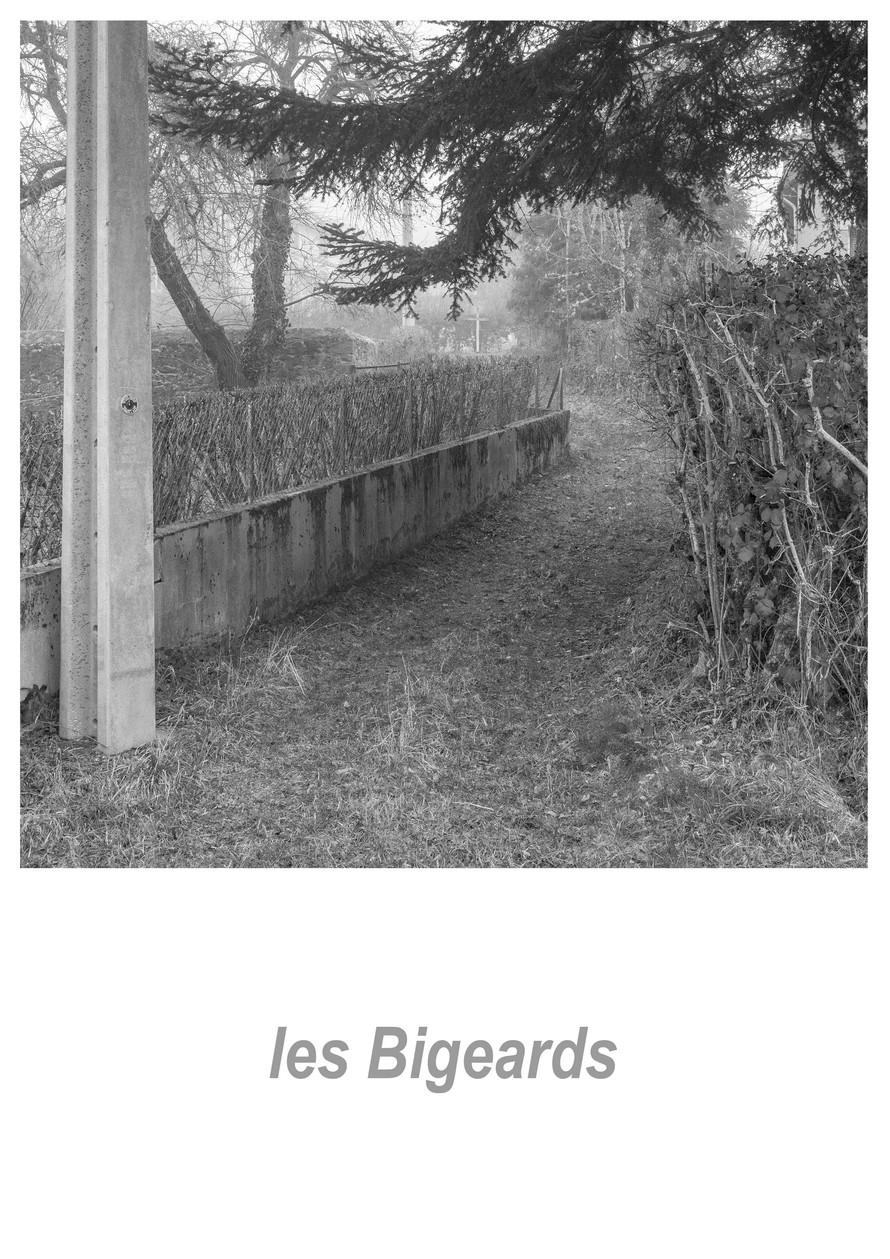les Bigeards 1.18w.jpg