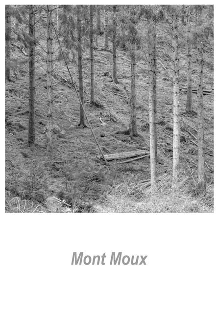 Mont Moux 1.5w.jpg