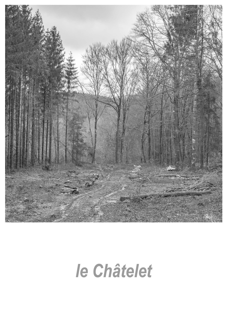 le_Châtelet_1.1w.jpg