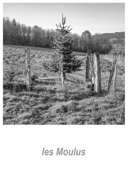 les Moulus 1.1w.jpg