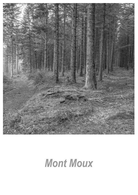 Mont Moux 1.4w.jpg