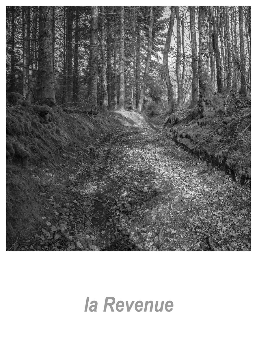 la Revenue 1.3w.jpg