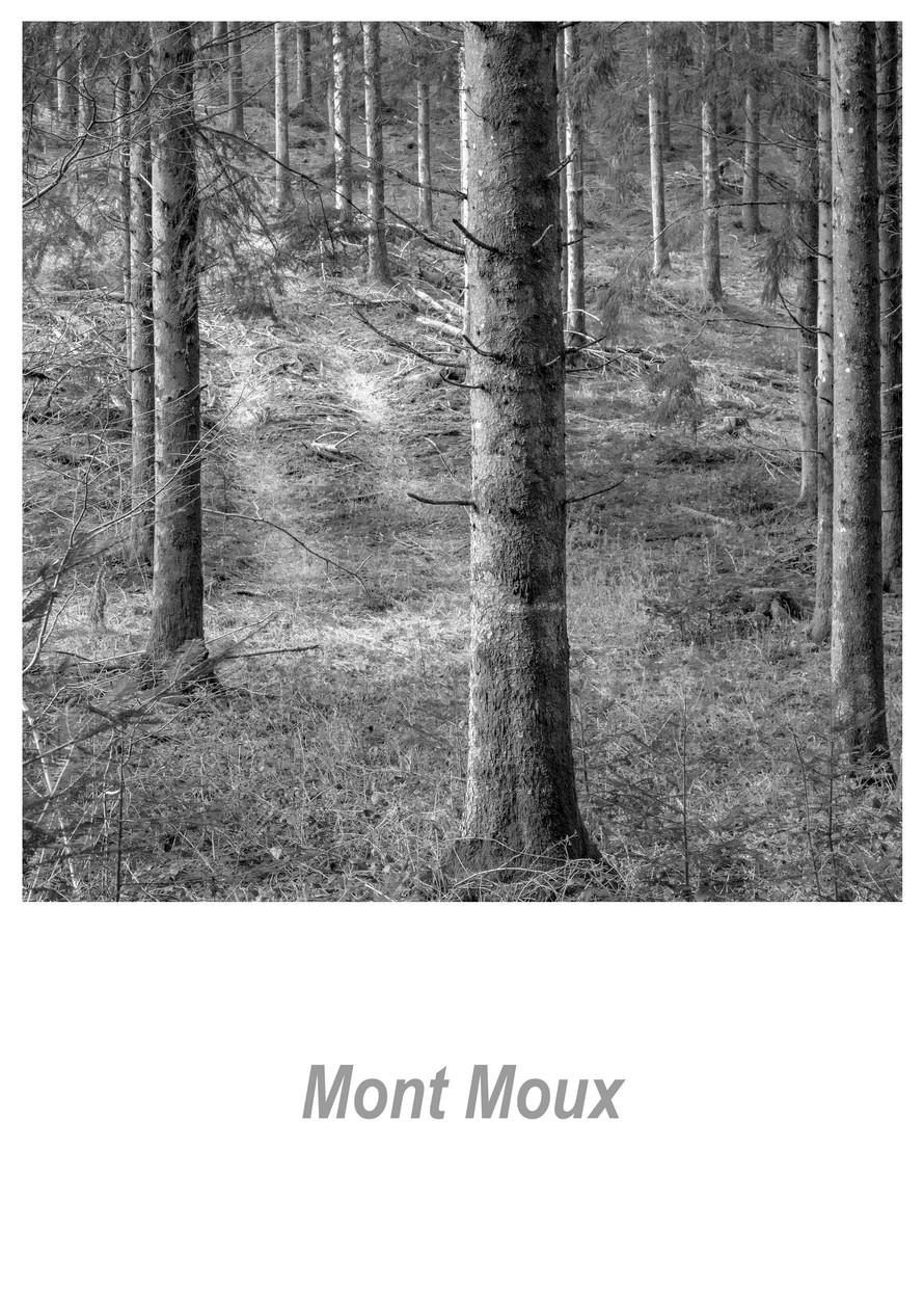 Mont Moux 1.7w.jpg