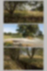 planche 2.3w.jpg