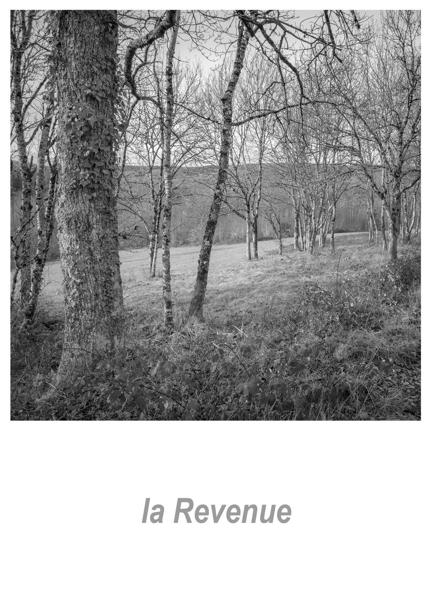 la Revenue 1.1w.jpg