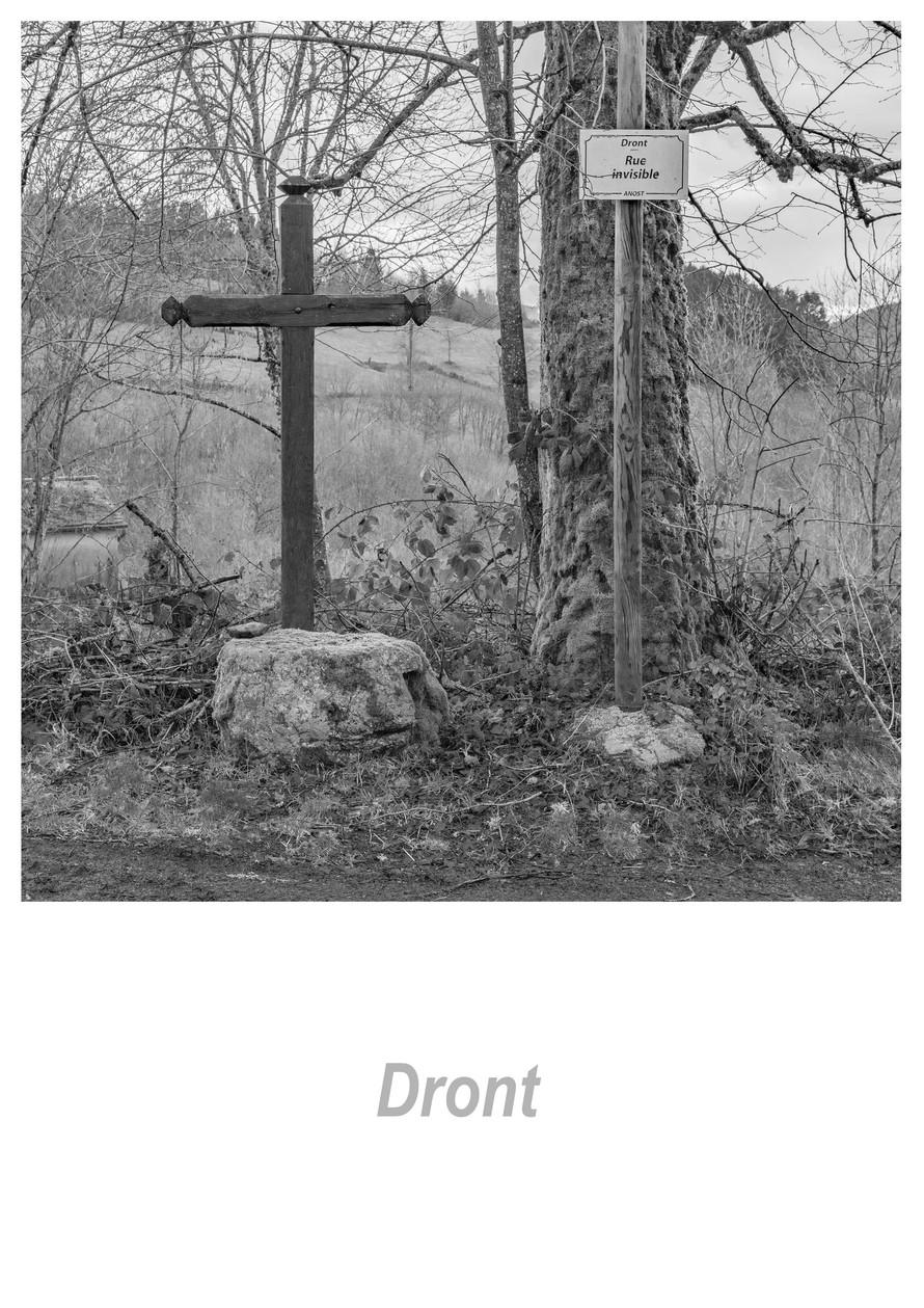 Dront 1.5w.jpg