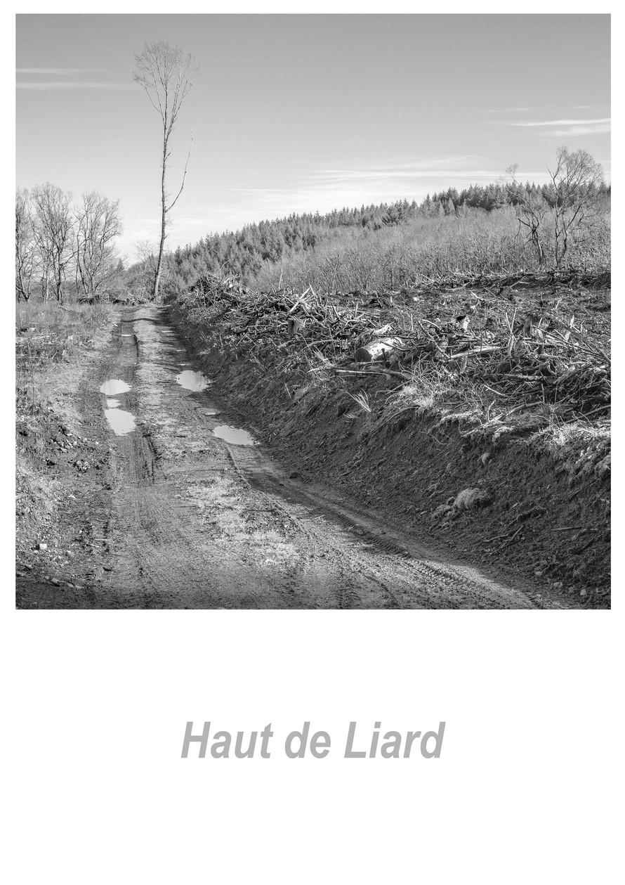 Haut de Liard 1.6w.jpg